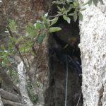 Jaume ascendiendo por la cueva