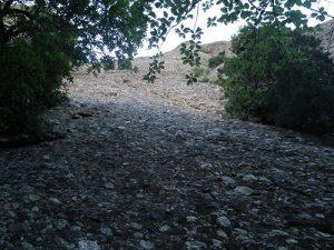 Foto desde pie de vía