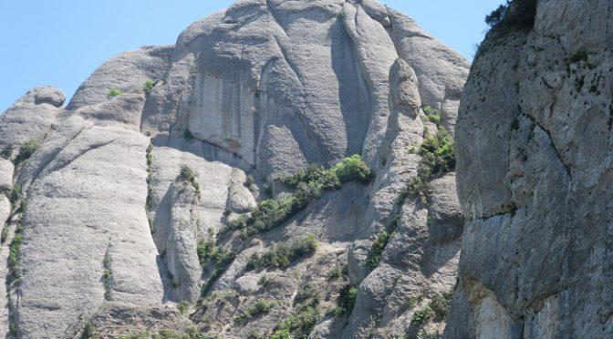 Homo Montserratinus. Roca d'en Sanhida.